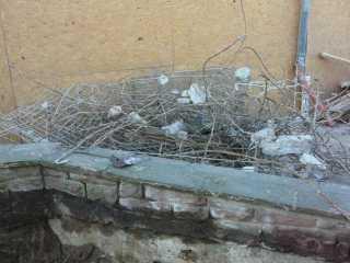 2012-01-16_FES-Neubau_37.jpg